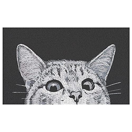 MR FANTASY Cat Front Door Mat Outdoor Mud Absorbent, Welcome Mat for Indoor & Outdoor, Doormat...