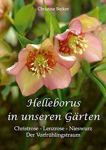 Helleborus in unseren Gärten: Christrose - Lenzrose - Nieswurz: Der Vorfrühlingstraum
