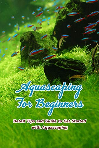 Aquascaping For Beginners: Detail Tips and Guide to Get Started with Aquascaping: Aquascaping Tutorial (English Edition)