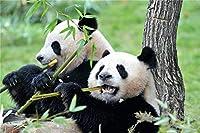 パンダを食べる竹大人の子供のための500ピースパズル、大人のための木製ジグソーパズル教育玩具DIYの家の装飾