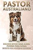 Pastor Australiano: Hechos divertidos sobre perros para niños #17