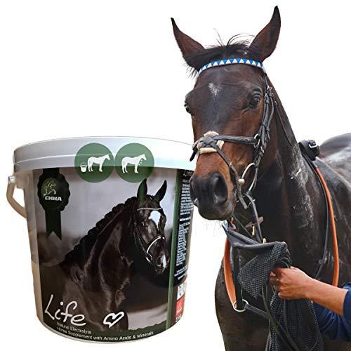 Elektrolyte Pferd I Pulver I Aminosäuren komplex I Mineralien Salze Vitamine I 100% rein I Mineralstoffe Haut Fell Huf I nach Durchfall Schwitzen Fieber I Amino Energy Booster Pferde 2,5kg