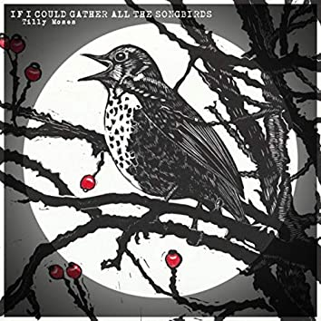 If I Could Gather All the Songbirds