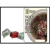 Bittersweet Wax Pottery Shards