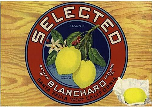 Camulos Ventura County U.F Del Valle Orange Citrus Fruit Crate Label Art Print