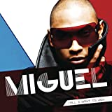 Songtexte von Miguel - All I Want Is You