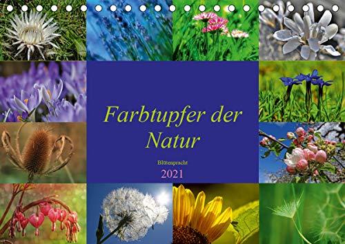 Farbtupfer der Natur – Blütenpracht...