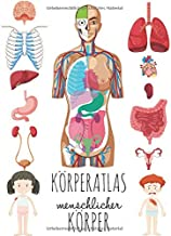Körperatlas Menschlicher Körper: Buch vom körper für kinder, Mein körper organe. (German Edition)
