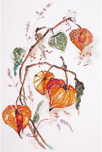 PANNA Physalis C-1837 - Juego de Punto de Cruz, 21 x 30 cm, Multicolor