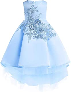 Best Gift Kids Party Dresses For Girls Embroidery Princess Dress Flower Girls Wedding Dress 2-10 Years
