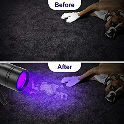 (2 Pack) UV Torch, Fulighture Pets Black Light 12LED 395nm, Dogs/Cats Urine Detector, Ultraviolet Flashlight Find Dry Stains on Carpets/Rugs/Floor with Batteries Included 7