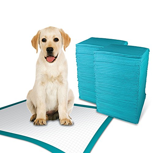 Simple Solution Training Puppy Pads | Extra Large, 6 Layer Dog Pee Pads, Absorbs Up to 7 Cups of Liquid | 28x30 Inches, 100 Count