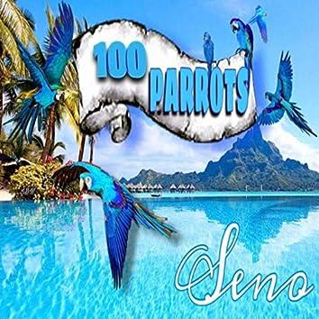 100 Parrots (Instrumental)