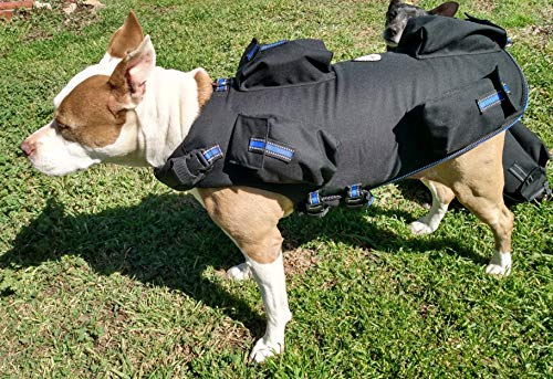 Full Body Weighted Dog Vest Weights On All 4 Legs More Effective -Builds Strength and Improves Overall Health - Reflective (Medium Vest: 15lbs. and 30lbs. BB's, Blue Strap)
