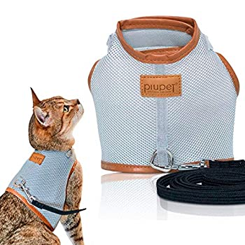 PiuPet® Harnais Chat, Laisse de chat de 1,20 m, Parure pour chat sûre, Collier pour chaton, Taille S