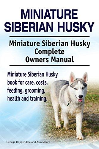 Miniature Siberian Husky Dog. Miniature Siberian Husky dog book for costs, care,...
