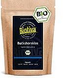 Semillas de fenogreco, cápsulas orgánicas, 500 unidades, 600 mg de semillas de fenogreco en polvo