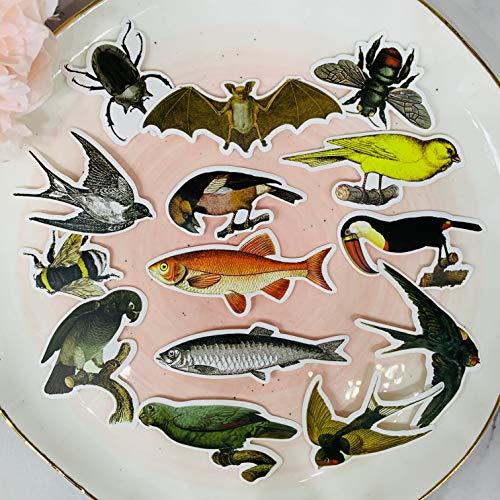 Blour Vintage vogel vleermuisstickers, zelfklevend, knutselen, scrapbooking, notitieboek, decoratief, 14 stuks