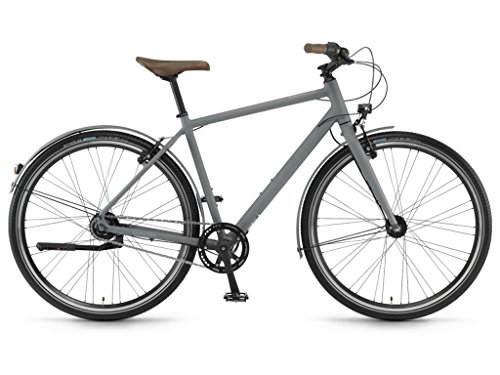 Winora Aruba Trekking Bike 2019 (61, Eisengrau matt Herren)