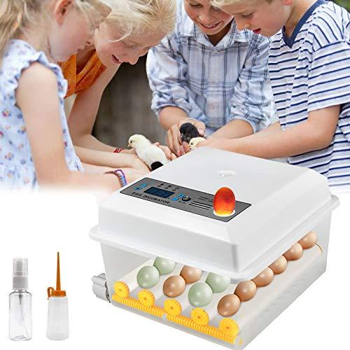 Incubatrice per Uova, incubatrice per UovaAutomatica per 16 Uova per polli, Anatre, oche in casa Egg Incubator , Automatico di Temperatura,Quaglia, eccHatcher automatico di grande capacità