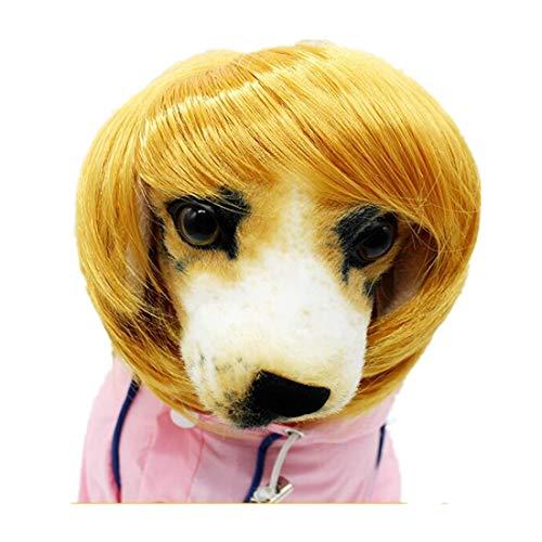 JXE Gentleman Stijl Huisdier Pruik Hond Pruik 1 st Gouden Bruin Kleur Blonde Pruik voor KUT
