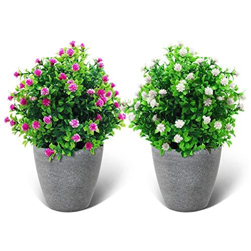 D.Jacware 2er Pack künstliche Blumen, Grünpflanzen imitierte Kunststoffe, gefälschte Gypsophila Fowers, hängende Pflanzen im Freien, Wohnkultur für Büro Badezimmer Badezimmer Hof Küche Bauernhaus