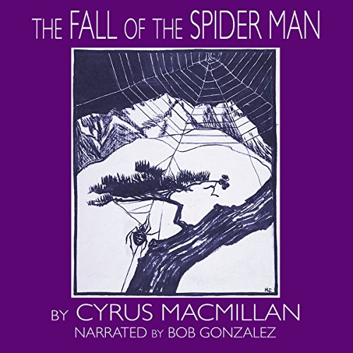 The Fall of the Spider Man audiobook cover art