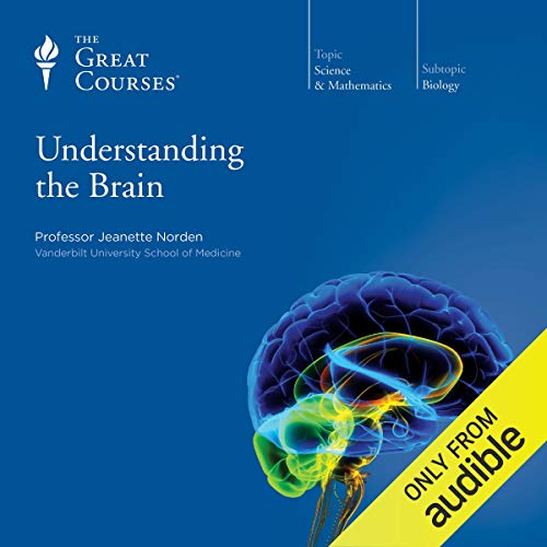 Understanding the Brain audiobook cover art