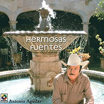 Hermosas Fuentes