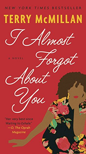 I Almost Forgot About You: A Novel