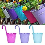 Lovous Hanging Flower Pot