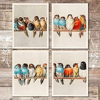 a perch of birds print