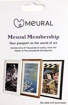 Meural Canvas Annual Membership Card for Digital Picture Frame Art