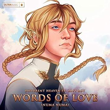 Words Of Love (Numa Numa)