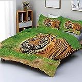 Juego de funda nórdica, felino de Sumatra que se esconde en una emboscada mientras acecha a sus presas momentos antes del ataque Juego de cama decorativo de 3 piezas con 2 fundas de almohada, verde na