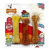 Nylabone Pollo a la Barbacoa/maíz en la COB/Sabor de Helado de Hielo Crema frenesí Variety Pack, 3Piezas
