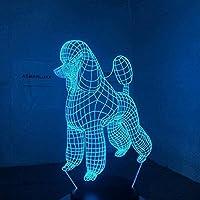 3DイリュージョンランプとLEDナイトライト子供用LEDテーブルランプの横7色タッチスイッチUSB充電アクリルフラット誕生日プレゼントの装飾に最適-Ga42