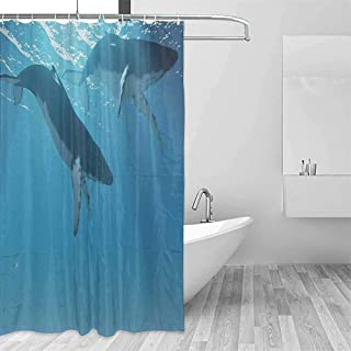Durable Shower Curtain Ocean Decor Collection Two Humpback Whales Swim Near The Ocean Surface in The Light Rays from The Sun Picture Shower Curtain with Hooks W36 xL72 Dimgray Ligt Blue