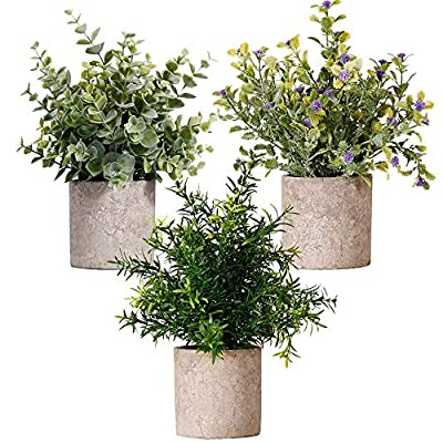 NEW RUICHENG Artificial Plant 3 Packs Set, Eucalyptus, Rosemary, andGypsophila Potted Plastic Plants for Home Office Party Decoration