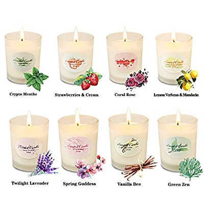 Scented Candles Aromatherapy Christmas