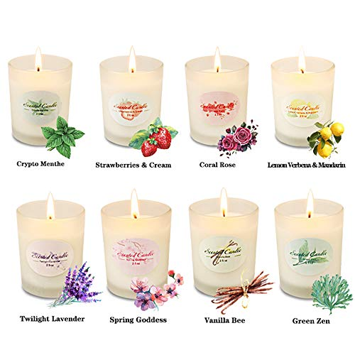 Scented Candles Aromatherapy Popular Valentine's Day Gifts for Women Glass Jar Candle Set Luxury Natural Soy Wax Fragrance Essential Oils Stress Relief Relaxation Birthday Gift