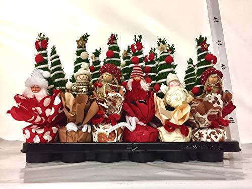 Kiefern-Set Weihnachten VRRI