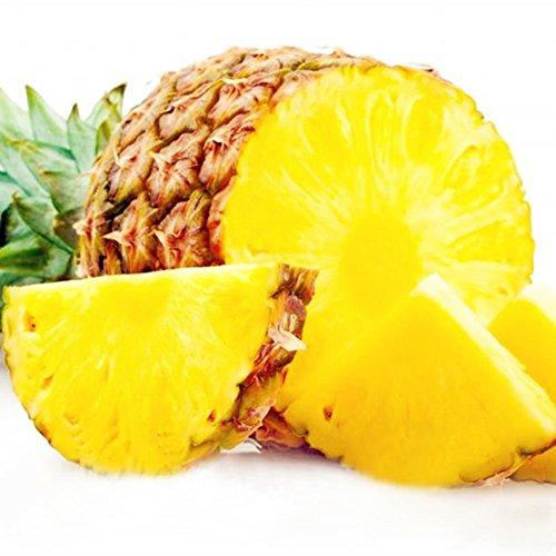 Ananasamen, 100 Stück Ananasamen, süße, saftige Früchte, seltene Pflanzen, Garten, Hof, Dachdekor