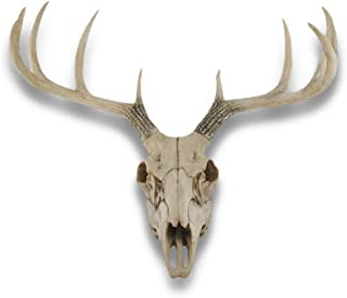 Things2Die4 10 Point Buck Deer Skull Bust Wall Hanging