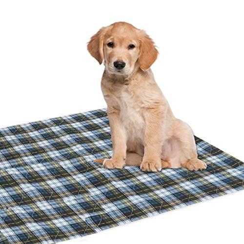 Dry Defender Puppy Pad