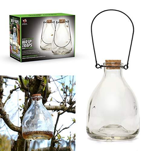 Ckb Ltd CKB-WC02 Lot de 2 pièges à guêpes en verre à suspendre avec cintre en métal pour l'intérieur et l'extérieur