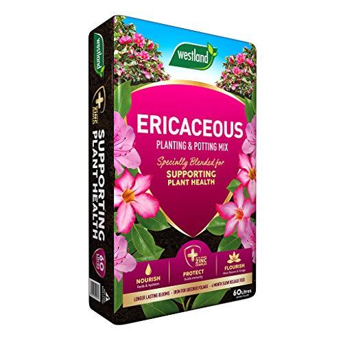 Westland Ericaceous Planting & Potting Mix 60 Litre