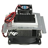 Pink Lizard Thermoelectric Peltier Refrigeration Cooling System Kit Cooler Fan TEC-12706