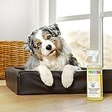 Geruchsneutralisierer Spray gegen Gerüche von Katzen-Urin - 9