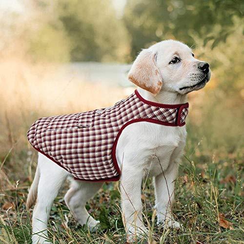 QKEMM Abrigo de Invierno Cálido para Perros Anillo en D Impermeable Reversible Cómodo Frío Chaqueta de Perro Chaleco Perrito Ropa Compruebe Rojo 3XL
